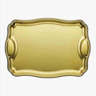 Rectangular Tray Golden 49,5 cm with Handle Made of Stainless Steel Matt Finishing
